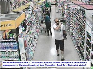Purse Theft Suspect